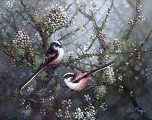 Longtailed tits in blossom